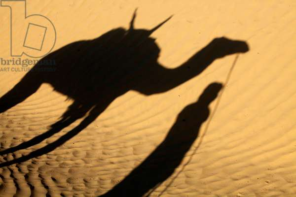Camel driver's shadow in the Sahara desert, Douz, Tunisie