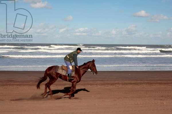Horse rider on a beach near Azemmour, Azemmour, MAROC