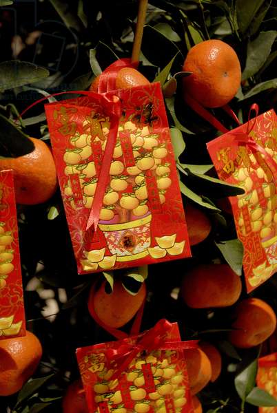 Chinese New Year decoration tangerine luck symbols, MACAO, CHINE