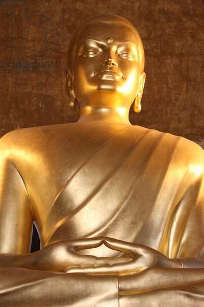 France, Ile-de-France, Vincennes : Main Buddha, Buddhist temple of the Pagode de Vincennes