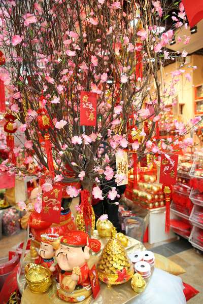 Chinese New Year Hong Kong China