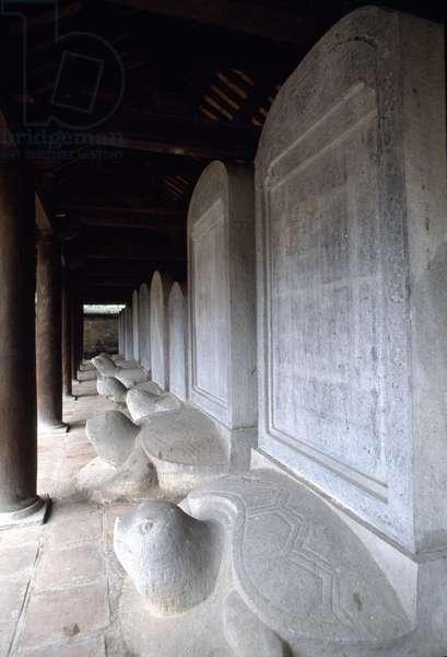Turtles. Literature Temple. Hanoi Hanoi Vietnam