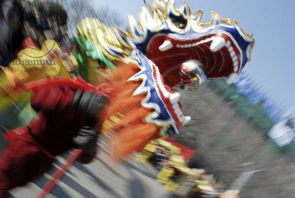 Dragon dance during Chinese new year, Paris, France