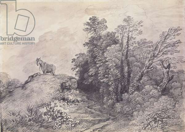 Wooded Landscape with Horse and Boy Sleeping, c.1757 (pencil & grey wash on paper)