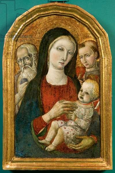 Madonna and Child Jesus, c.1480-1495 (tempera on panel)