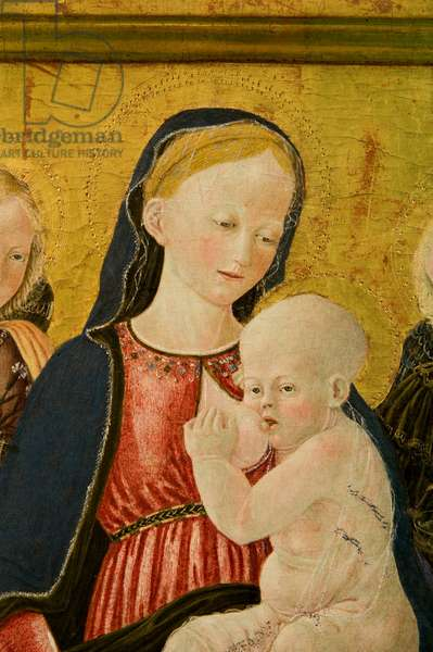 Madonna del latte and angels, c.1460-1480 (tempera on panel)