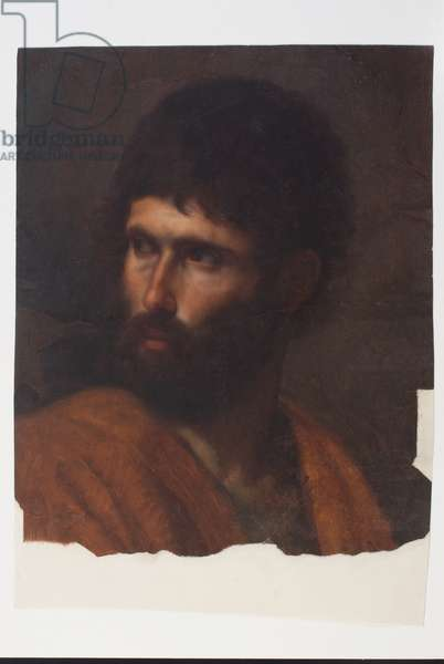 Manly Portrait, c.1790-1834 (oil on cardboard)