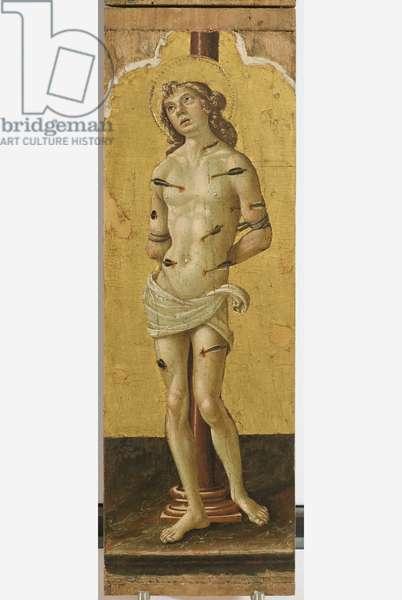 Polyptych of the Sylvestrines (detail) - Saint Sebastian