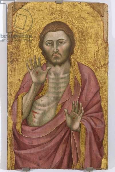 Christ showing the stigmata