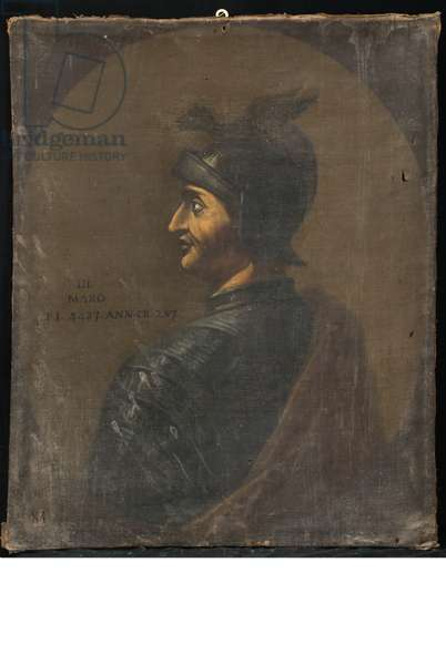 Portrait of Maro Perugino, c.1731 (oil on canvas)