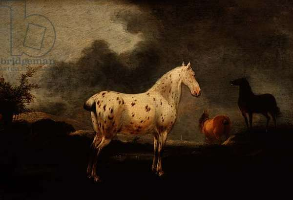 Landscape with a dapple grey horse, c.1670 (oil on panel)