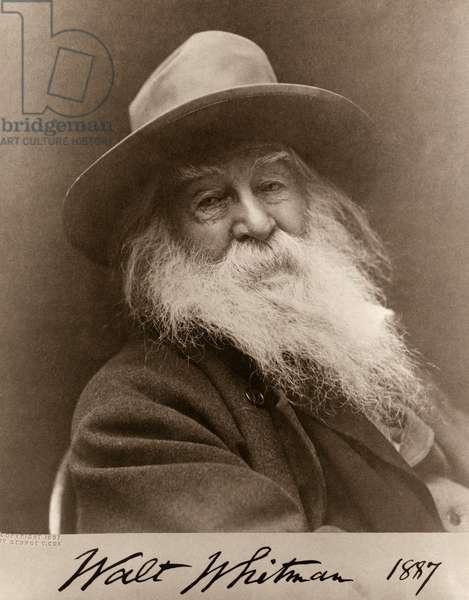 Portrait of Walt Whitman in 1887, 1887 (albumen print)