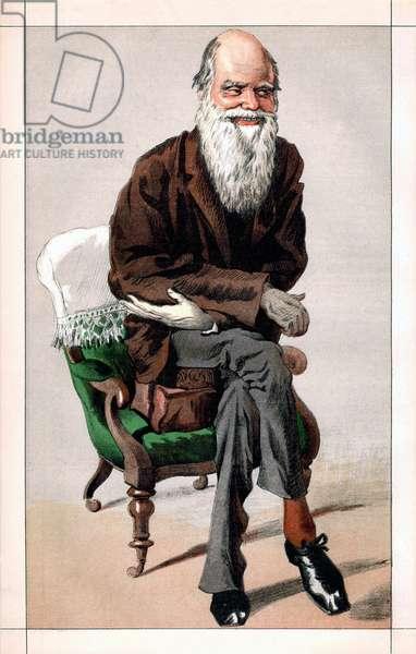 Portrait of Charles Darwin, 1871 (chromolithograph)