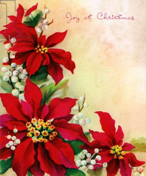 Christmas Poinsettia and Mistletoe Design, 1940s (lithograph)