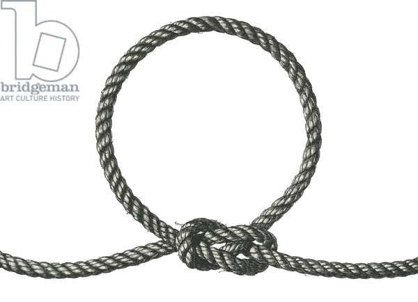 Illustration of a Rope Noose, 1937 (screen print)