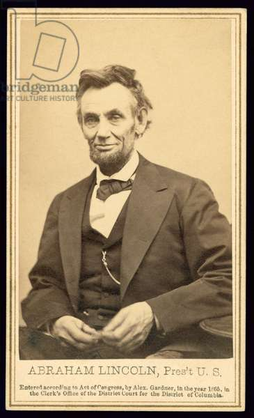 Portrait of Lincoln by Alexander Gardner, 1865 (albumen print)