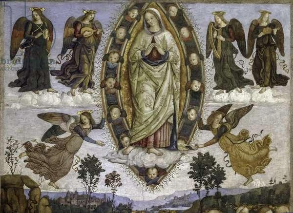 Assumption of the Virgin Mary,  Basso Della Rovere Chapel, 1471-1484 (fresco)