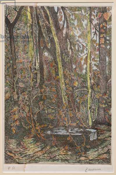In the Wood (hand coloured lithograph with pastels)