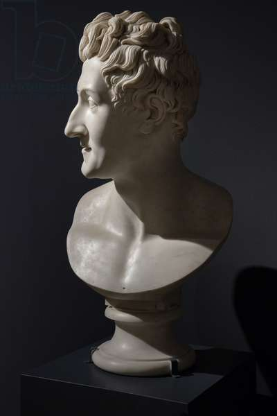 Colossal Bust of Leopoldo Cicognara, 1818-22 (marble)