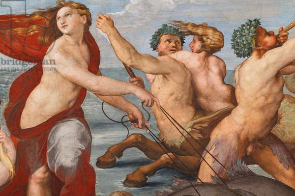 The Triumph of Galatea, 1513-14 (fresco) (detail of 2646174)