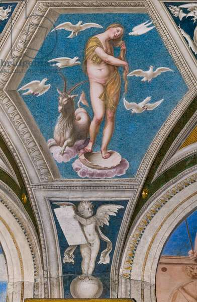 Venus and the astrological sign of the Capricorn, 1511 (fresco)