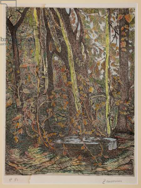 In the wood (coloured lithograph)