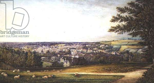 Guildford from the South West, 1865