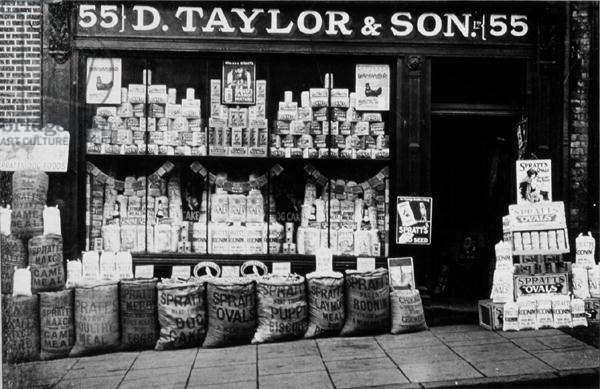 D. Taylor & Sons, 55 High Street, Guildford (b/w photo)