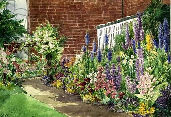 The Flower Border