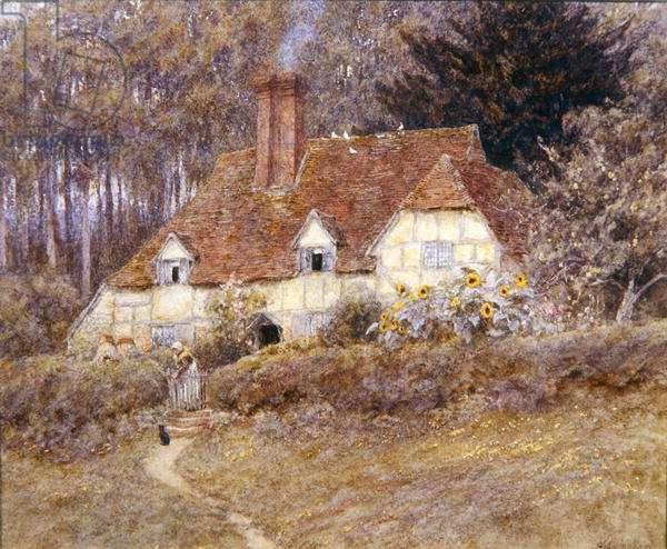 A Surrey Cottage (w/c on paper)