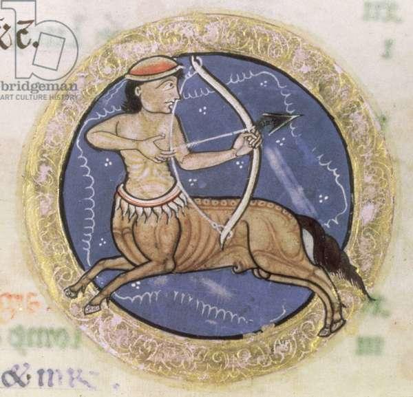 MS Hunter 229 f.6r Sagittarius, from the Hunterian Psalter, c.1170 (pen & ink and tempera on vellum) (detail)