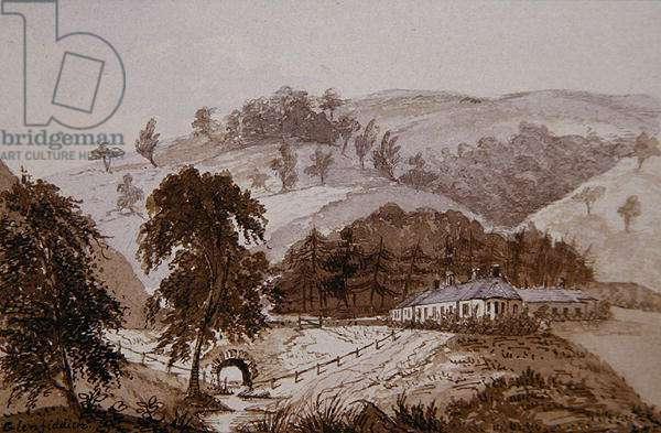 Glenfiddich (pen & ink and ink wash on paper)