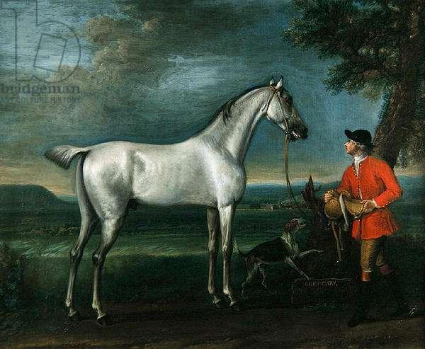 Grey Carey, Son of Grey Ramsden, c.1743-6 (oil on canvas)