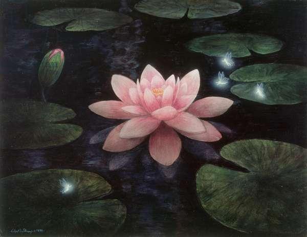 Lotus sprites, 1995 (acrylic on board)