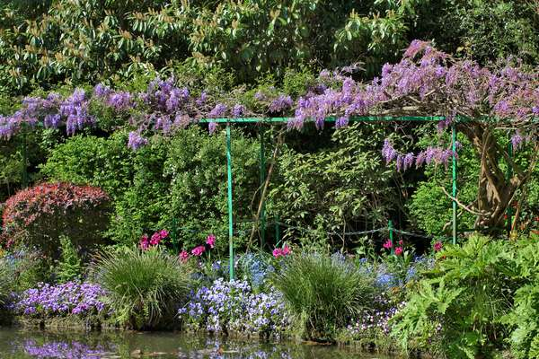 Eure (department 27) - Giverny - Water Garden by Claude Monet