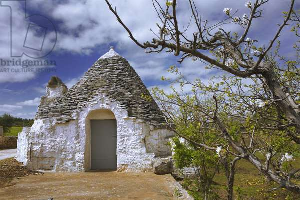 Italy: Puglia, Trulli in Itrill Valley: circular dry stone houses with a conical roof, UNESCO World Heritage class