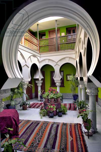 Spain - Andalusia - patio hotelier in Cordou