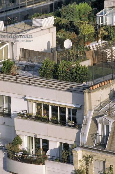 Paris - Modern architecture - Arboree terrace