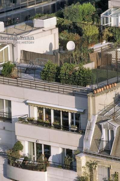 Paris - Modern architecture - Arboree terrace