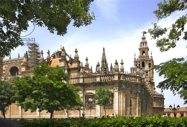 Spain - Andalusia - Seville - the Cathedrale