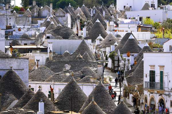 Italy: Puglia: town of Alberobello with its beehive-shaped cottages with a conical roof, dry stone (trulli) bats and inscribed in the UNESCO World Patimony