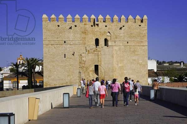 Spain - Andalusia - Córdoo - Calahorra Tower