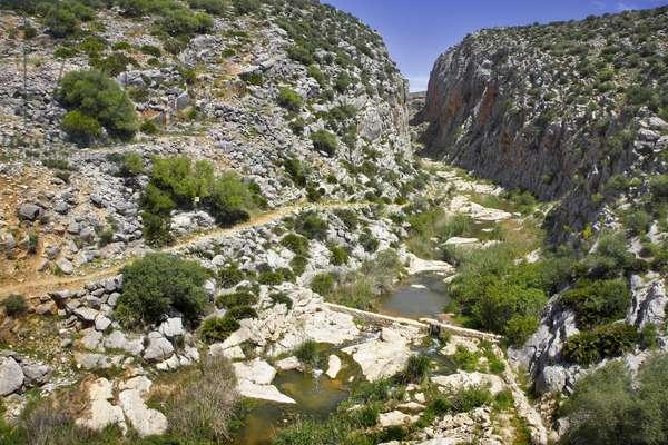 Spain - Andalusia - Sierra de Ronda - landscape