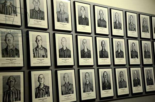 Auschwitz-Birkenau Musem, Oswicim, Poland