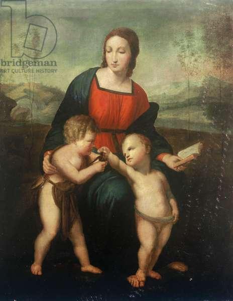The Madonna del Cardellino (oil on canvas)