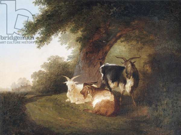 Three Goats in a Landscape, 1848 (oil on canvas)