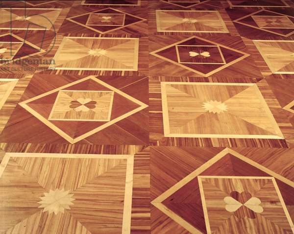Detail of the inlaid floor in the Raspberry Drawing Room, designed by Carlo Rossi (1775-1849) and made by the parquet makers in Okhta village, 19th century (photo)