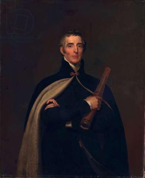 Arthur Wellesley, Duke of Wellington, with a telescope (oil on canvas)