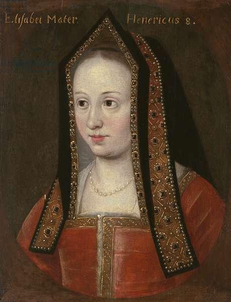 Portrait of Elizabeth of York (oil on panel)