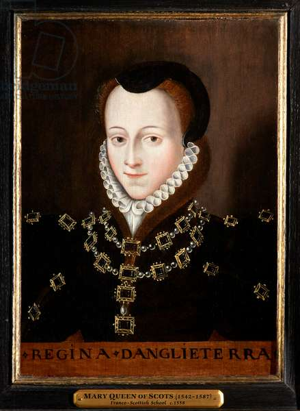 Mary, Queen of Scots, c.1558 (oil on oak panel)